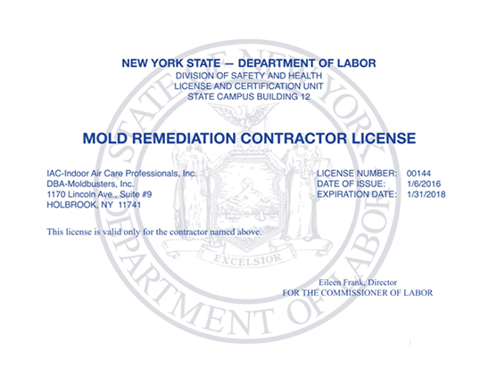 mold remediation contractor license